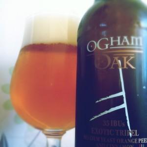 Ogham Oak