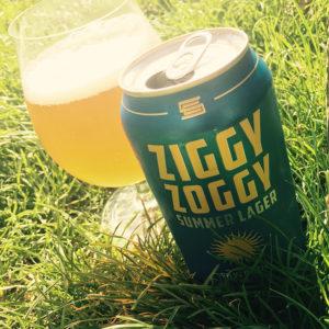 ziggy-zoggy-1