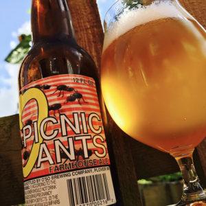 picnic-ants